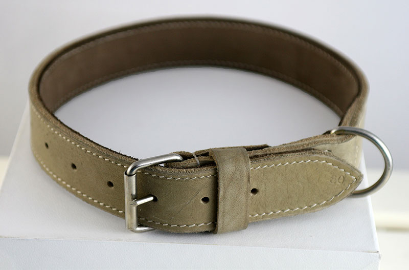 What Is The Largest Length Dog Collar