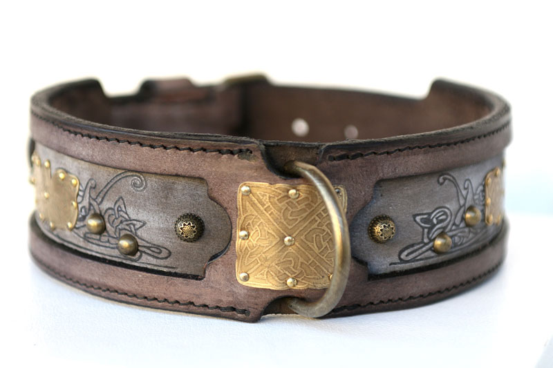 Cool Dog Leashes And Collars